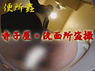 セックス 盗撮:寺子屋・洗面所盗SATU:おまんこパイパン