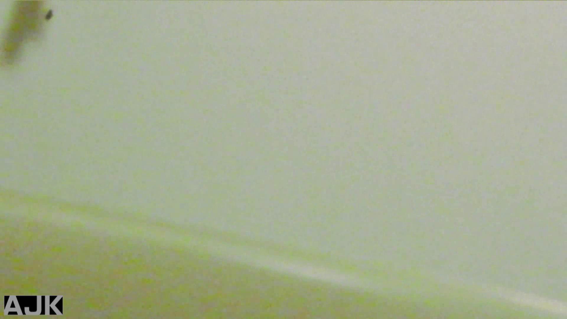 隣国上階級エリアの令嬢たちが集うデパートお手洗い Vol.11 お手洗い  67pic 17