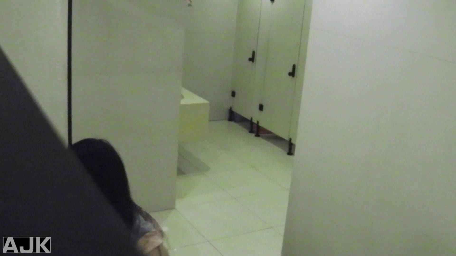 隣国上階級エリアの令嬢たちが集うデパートお手洗い Vol.11 お手洗い  67pic 51