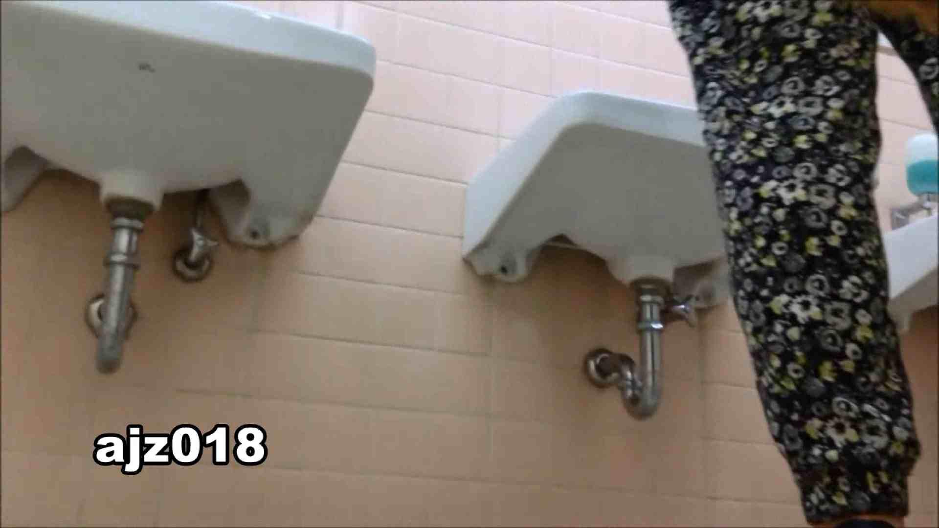 某有名大学女性洗面所 vol.18 洗面所  82pic 43