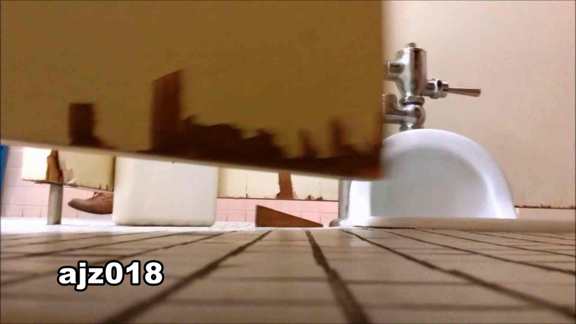 某有名大学女性洗面所 vol.18 洗面所  82pic 54