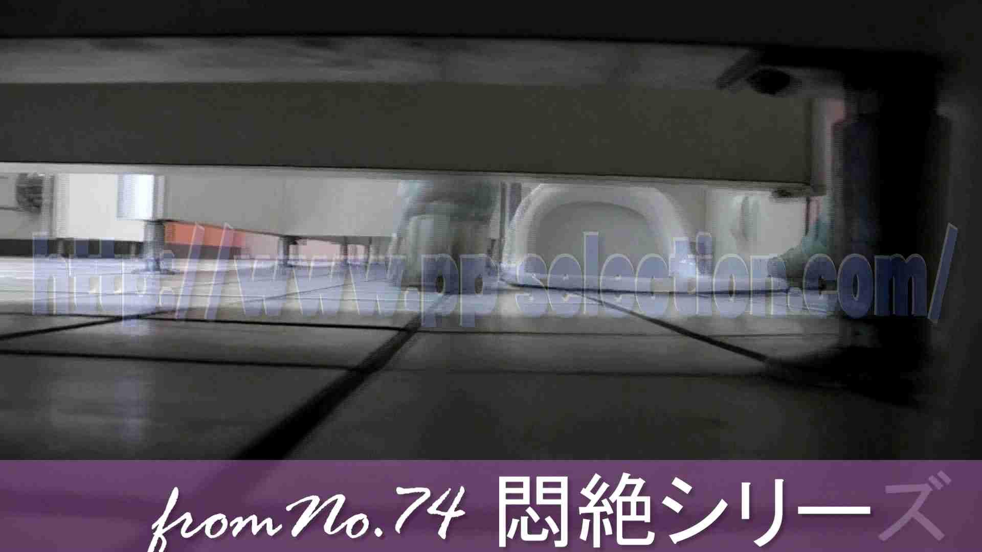 美しい日本の未来 本格編 覗き  93pic 40