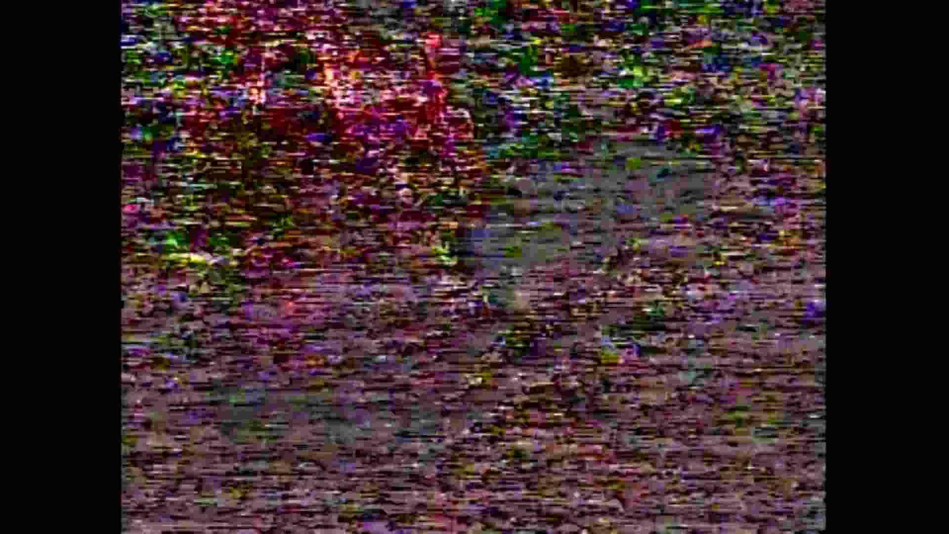 レース場での秘め事 Vol.15 ギャル  102pic 34