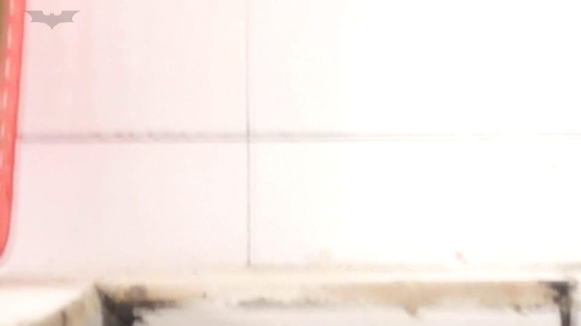 JD盗撮 美女の洗面所の秘密 Vol.20 美女  96pic 1