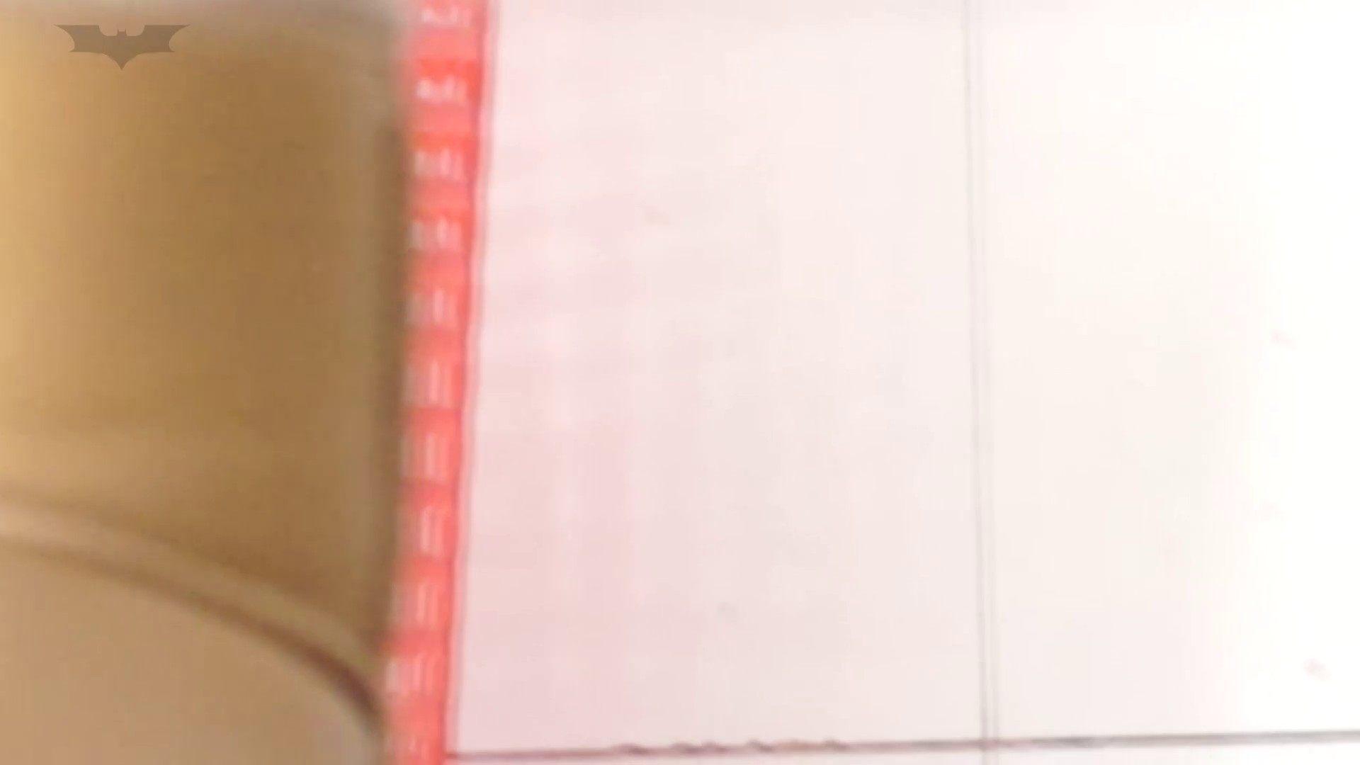 JD盗撮 美女の洗面所の秘密 Vol.20 美女  96pic 2