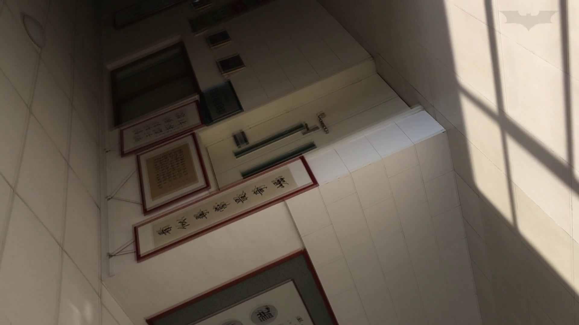 芸術大学ガチ潜入盗撮 JD盗撮 美女の洗面所の秘密 Vol.91 トイレ  84pic 14