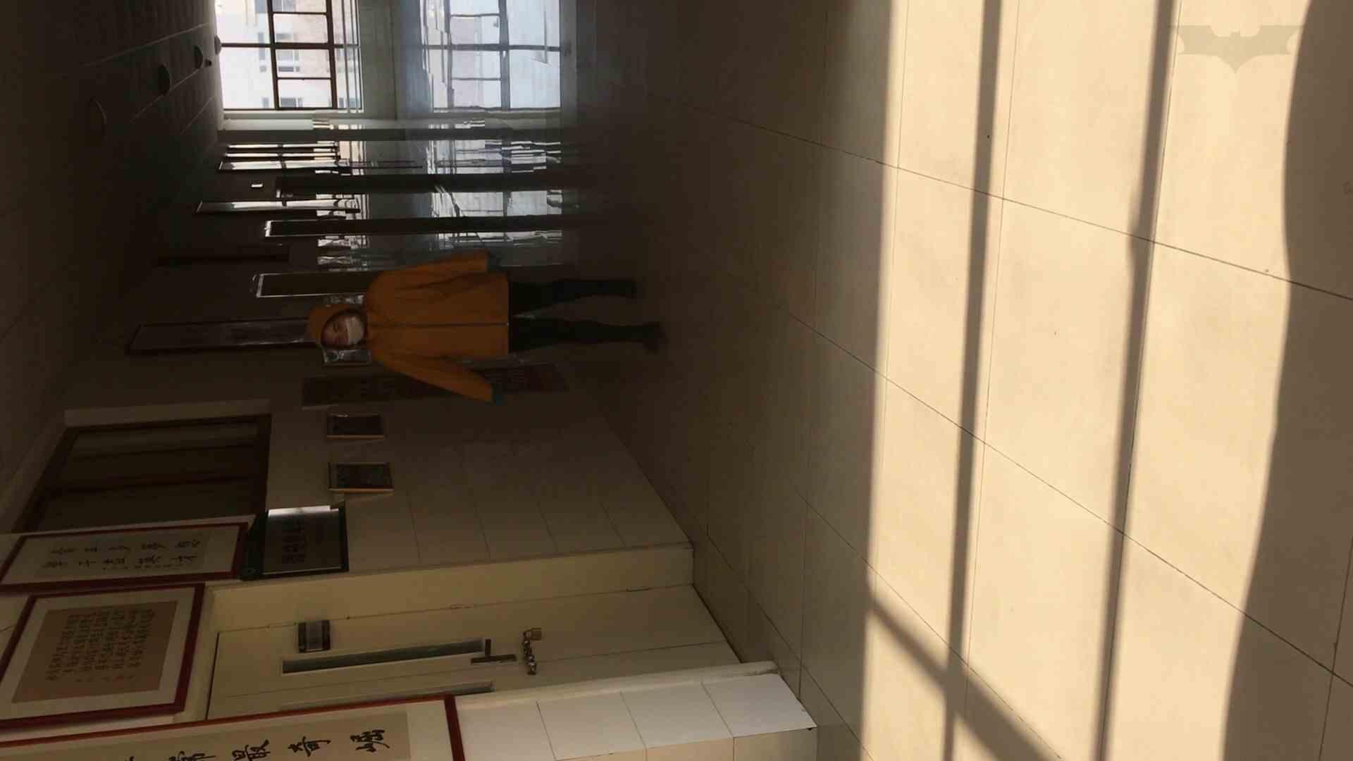 芸術大学ガチ潜入盗撮 JD盗撮 美女の洗面所の秘密 Vol.91 トイレ  84pic 18