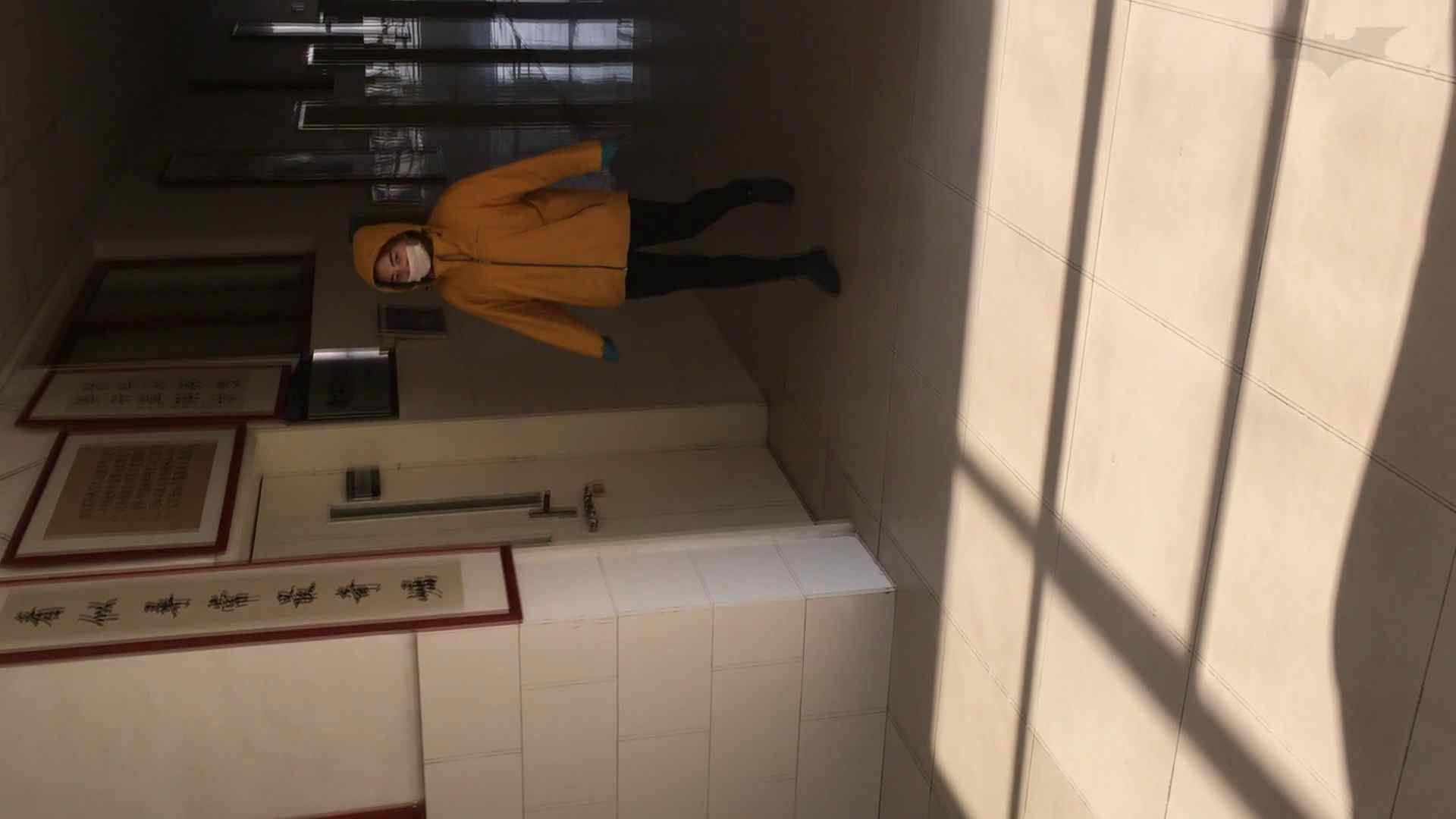 芸術大学ガチ潜入盗撮 JD盗撮 美女の洗面所の秘密 Vol.91 トイレ  84pic 19