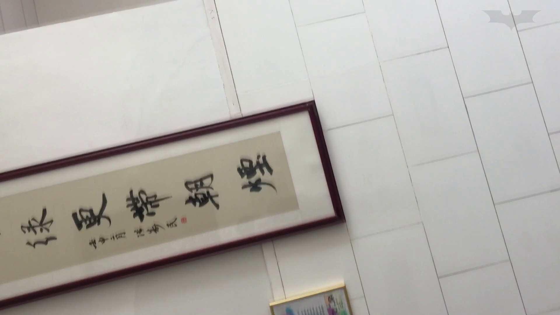 芸術大学ガチ潜入盗撮 JD盗撮 美女の洗面所の秘密 Vol.91 トイレ  84pic 28