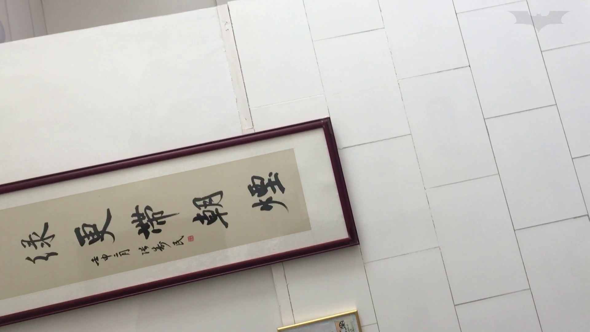 芸術大学ガチ潜入盗撮 JD盗撮 美女の洗面所の秘密 Vol.91 トイレ  84pic 29