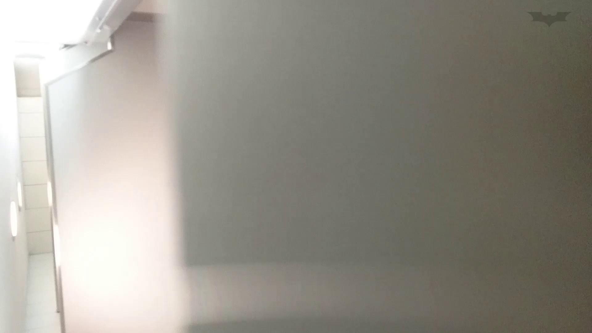 化粧室絵巻 ショッピングモール編 VOL.17 OL  71pic 4