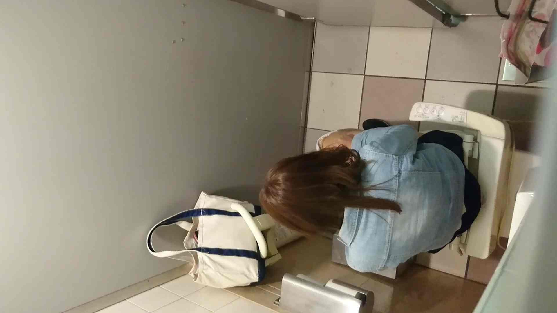化粧室絵巻 ショッピングモール編 VOL.17 OL  71pic 11