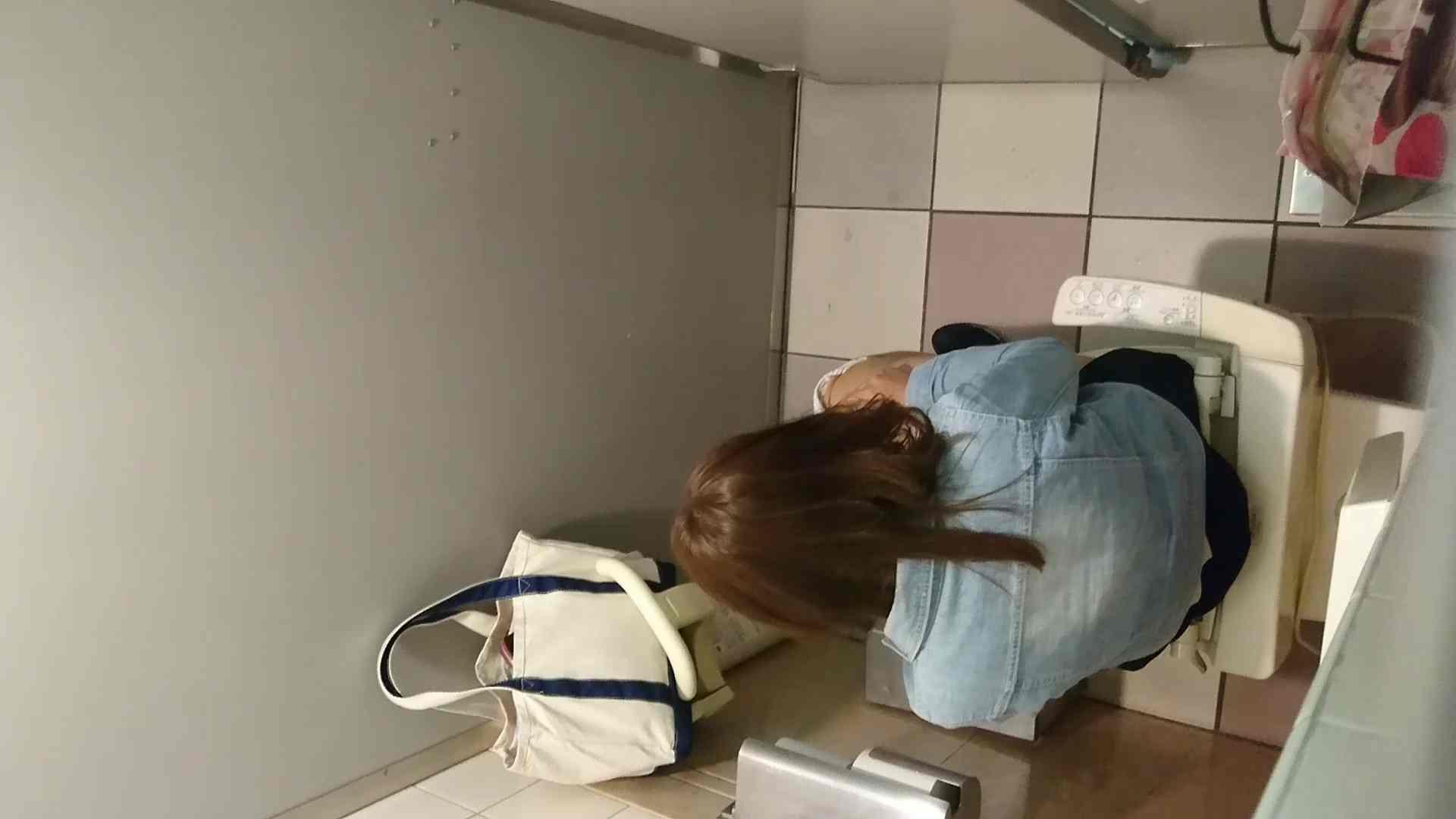 化粧室絵巻 ショッピングモール編 VOL.17 OL  71pic 12