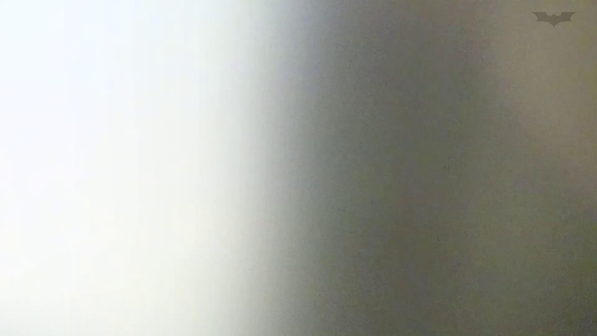 化粧室絵巻 ショッピングモール編 VOL.17 OL  71pic 43