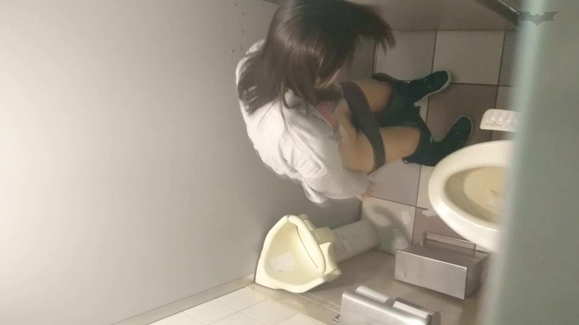 化粧室絵巻 ショッピングモール編 VOL.17 OL  71pic 56