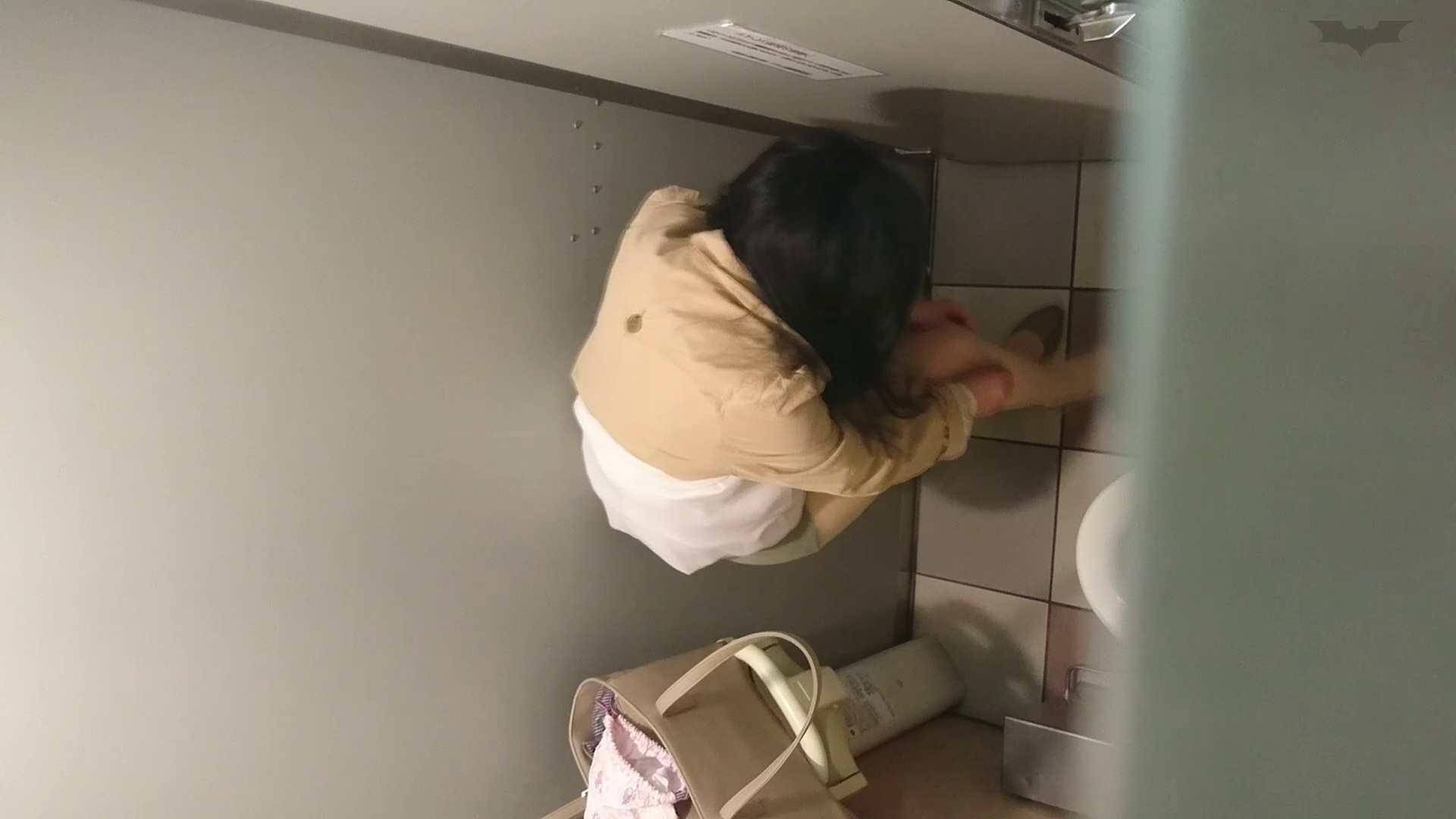 化粧室絵巻 ショッピングモール編 VOL.19 OL  93pic 61