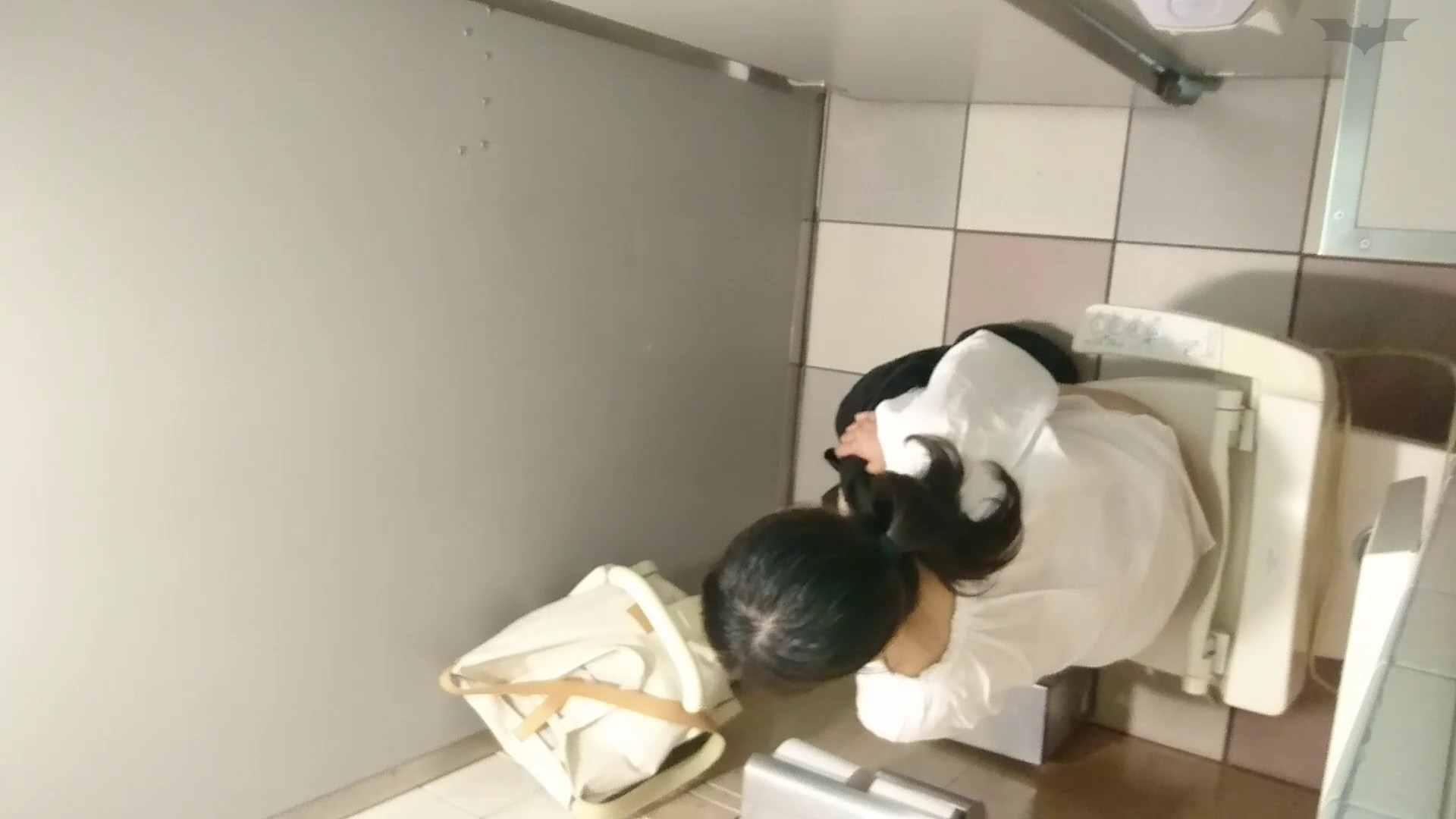 化粧室絵巻 ショッピングモール編 VOL.22 OL  95pic 2