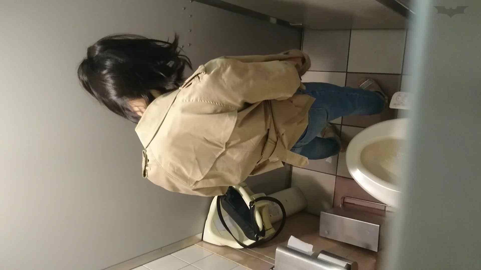 化粧室絵巻 ショッピングモール編 VOL.22 OL  95pic 13