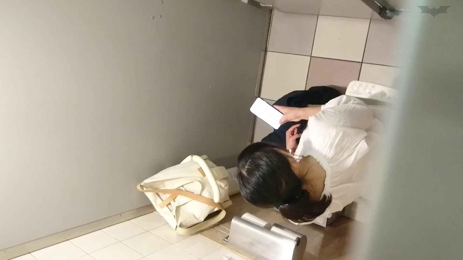 化粧室絵巻 ショッピングモール編 VOL.22 OL  95pic 21