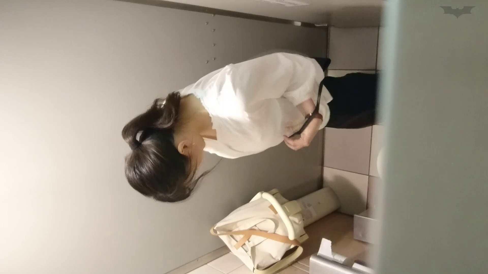 化粧室絵巻 ショッピングモール編 VOL.22 OL  95pic 32