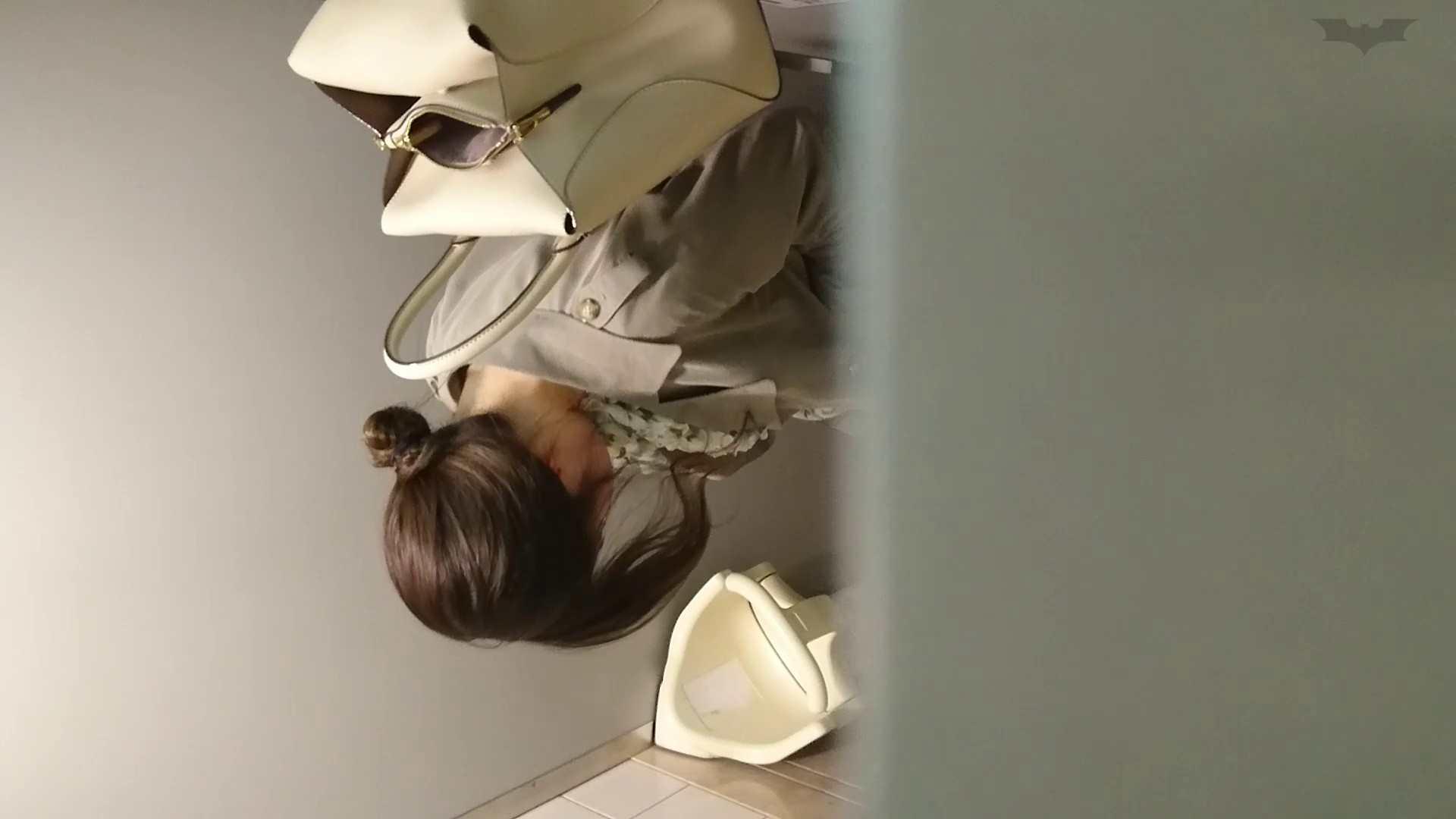 化粧室絵巻 ショッピングモール編 VOL.22 OL  95pic 60