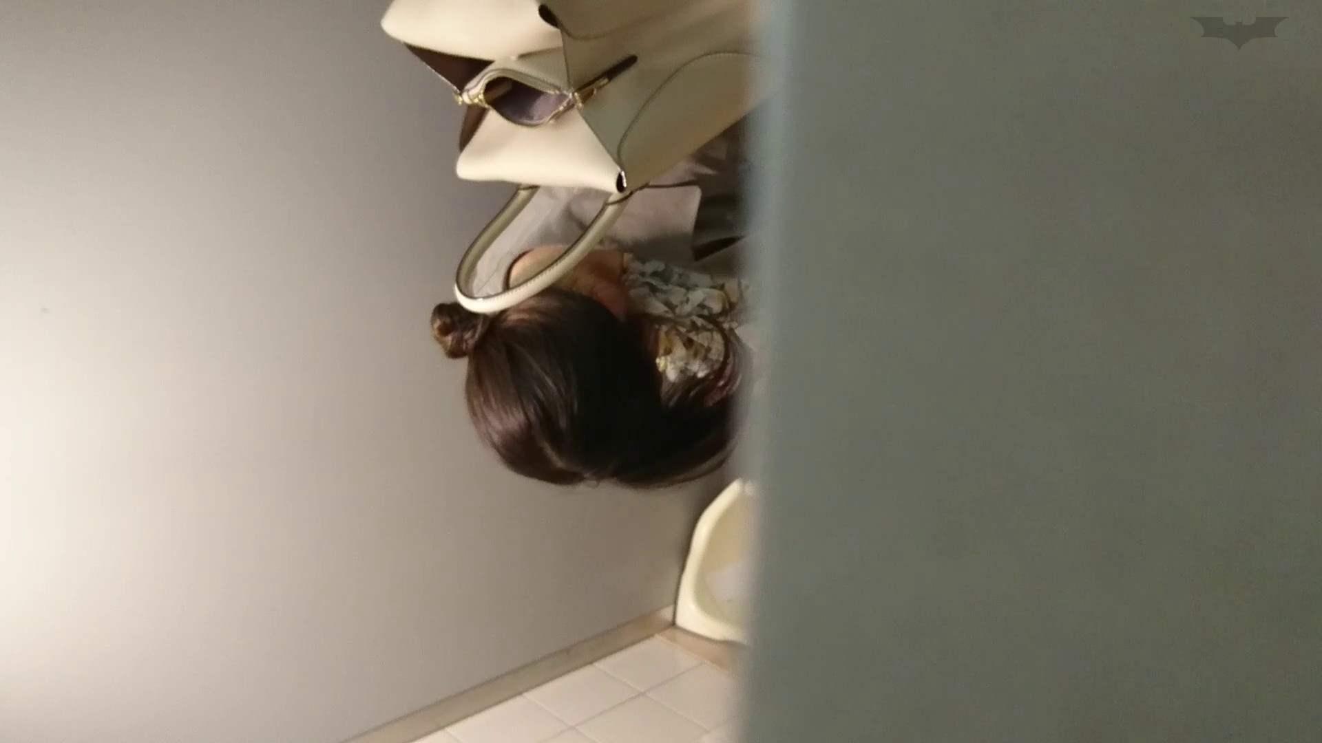 化粧室絵巻 ショッピングモール編 VOL.22 OL  95pic 65