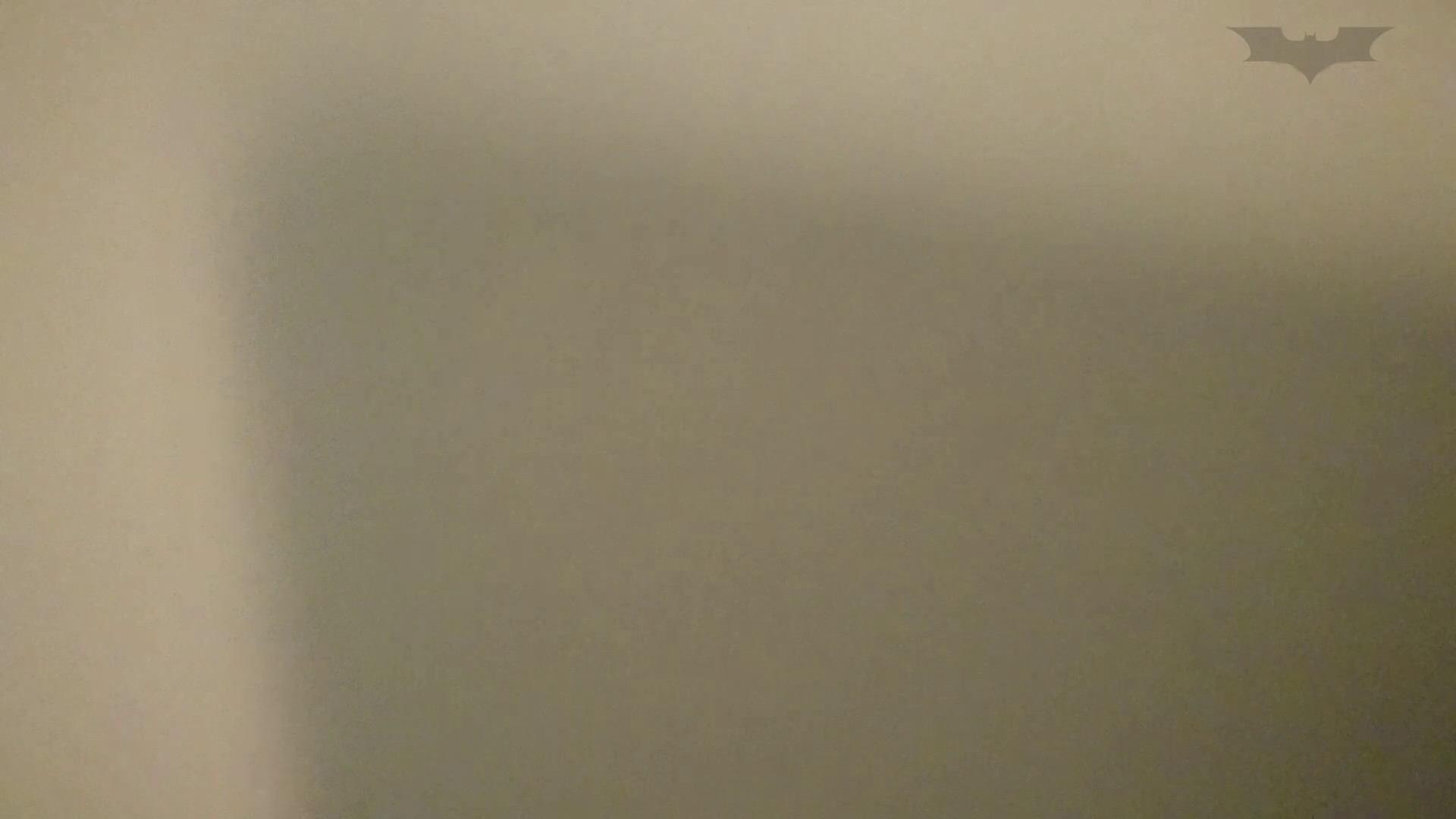 化粧室絵巻 ショッピングモール編 VOL.15 OL  111pic 79