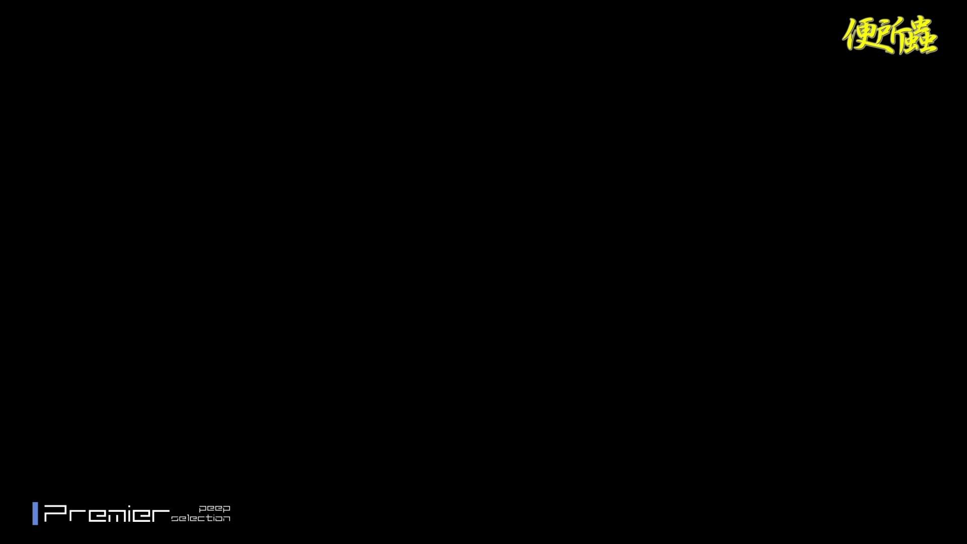 【洗面所盗撮】便所蟲さんリターン vol.24 便所  101pic 84