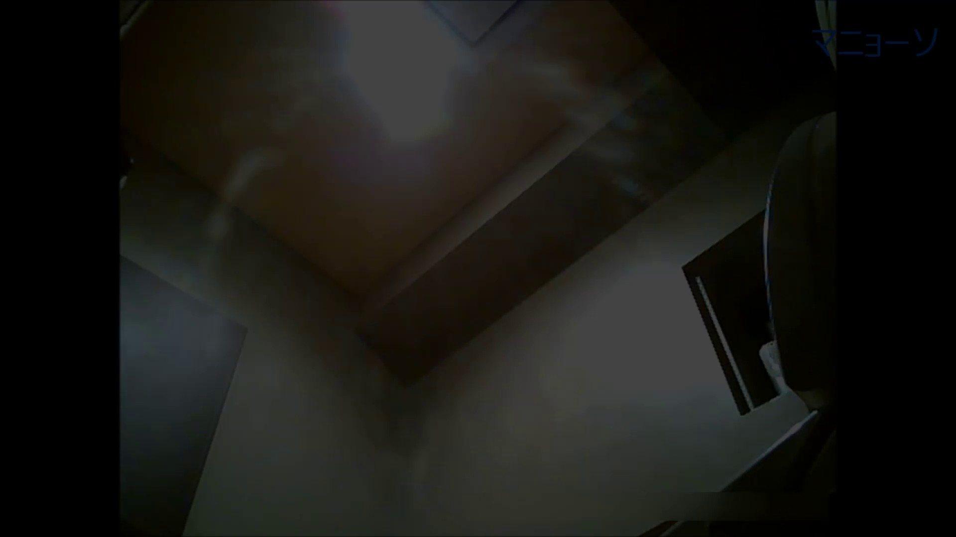 トイレでひと肌脱いでもらいました (OL編)Vol.06 OL  61pic 41