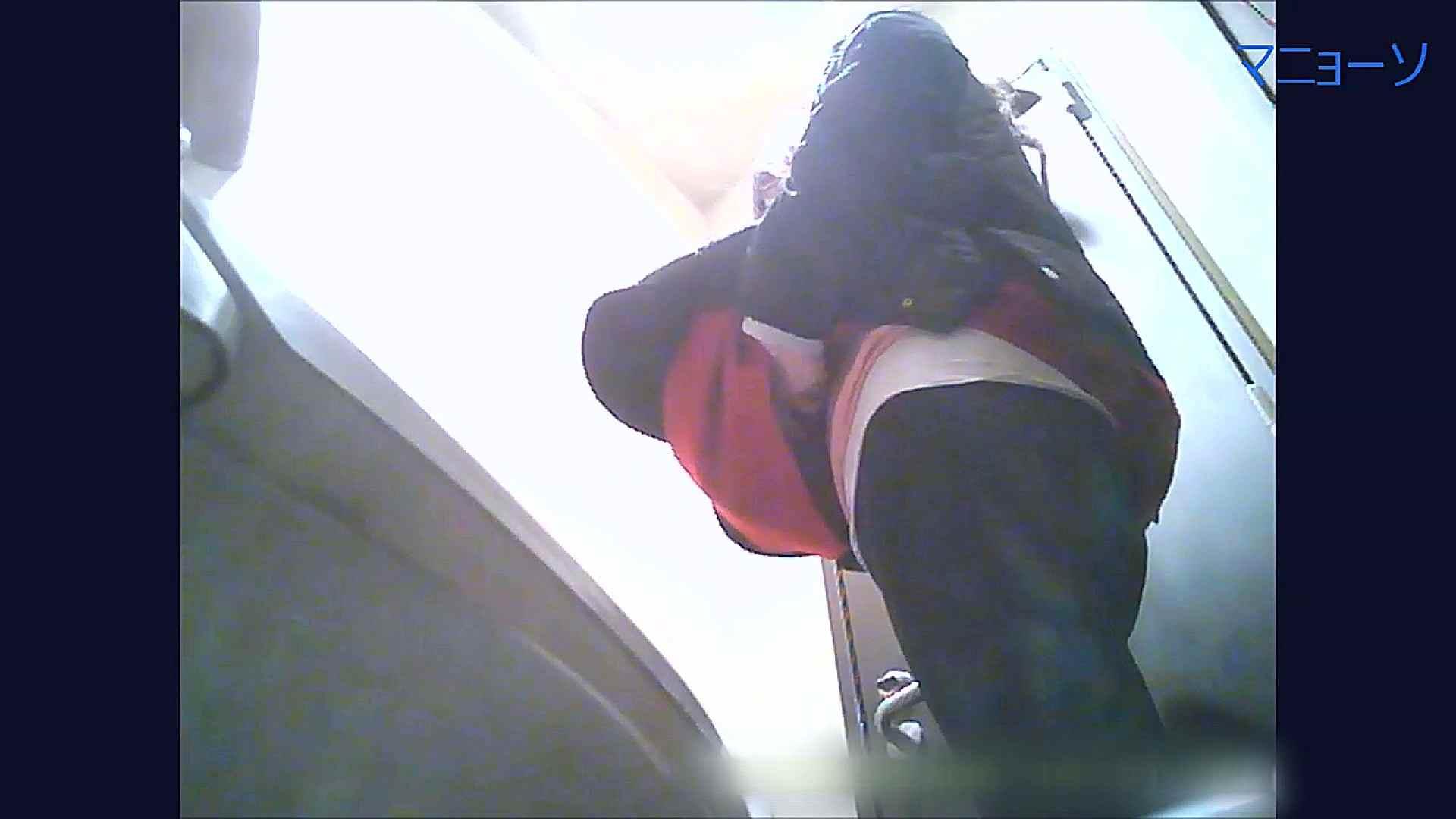 トイレでひと肌脱いでもらいました (OL編)Vol.09 トイレ  94pic 80