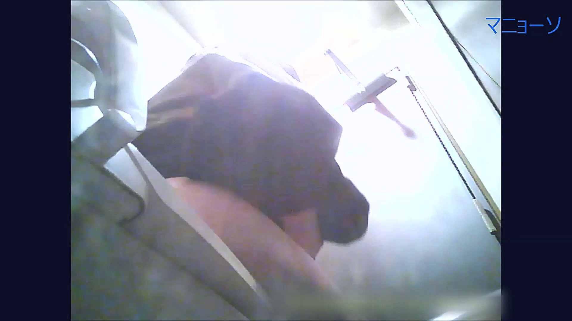 トイレでひと肌脱いでもらいました (OL編)Vol.09 トイレ  94pic 93
