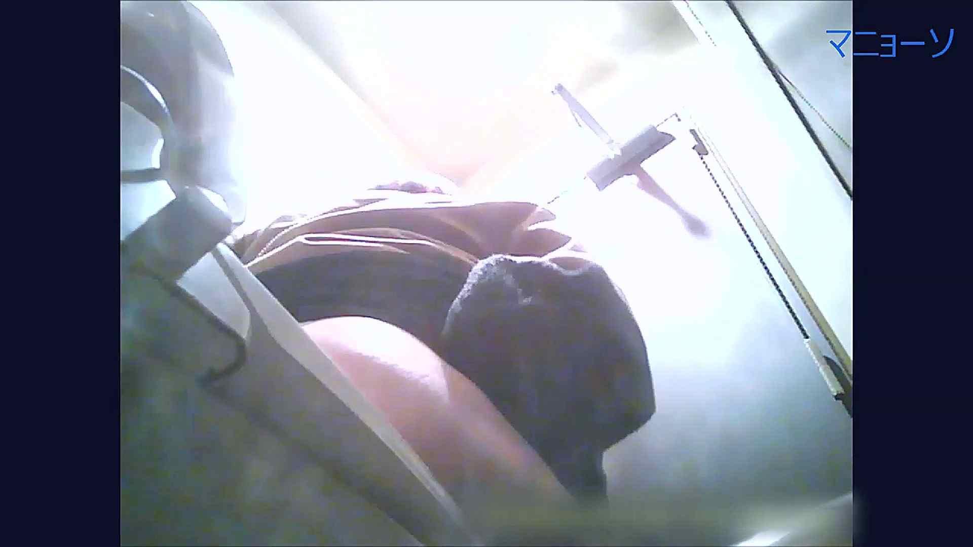 トイレでひと肌脱いでもらいました (OL編)Vol.09 トイレ  94pic 94