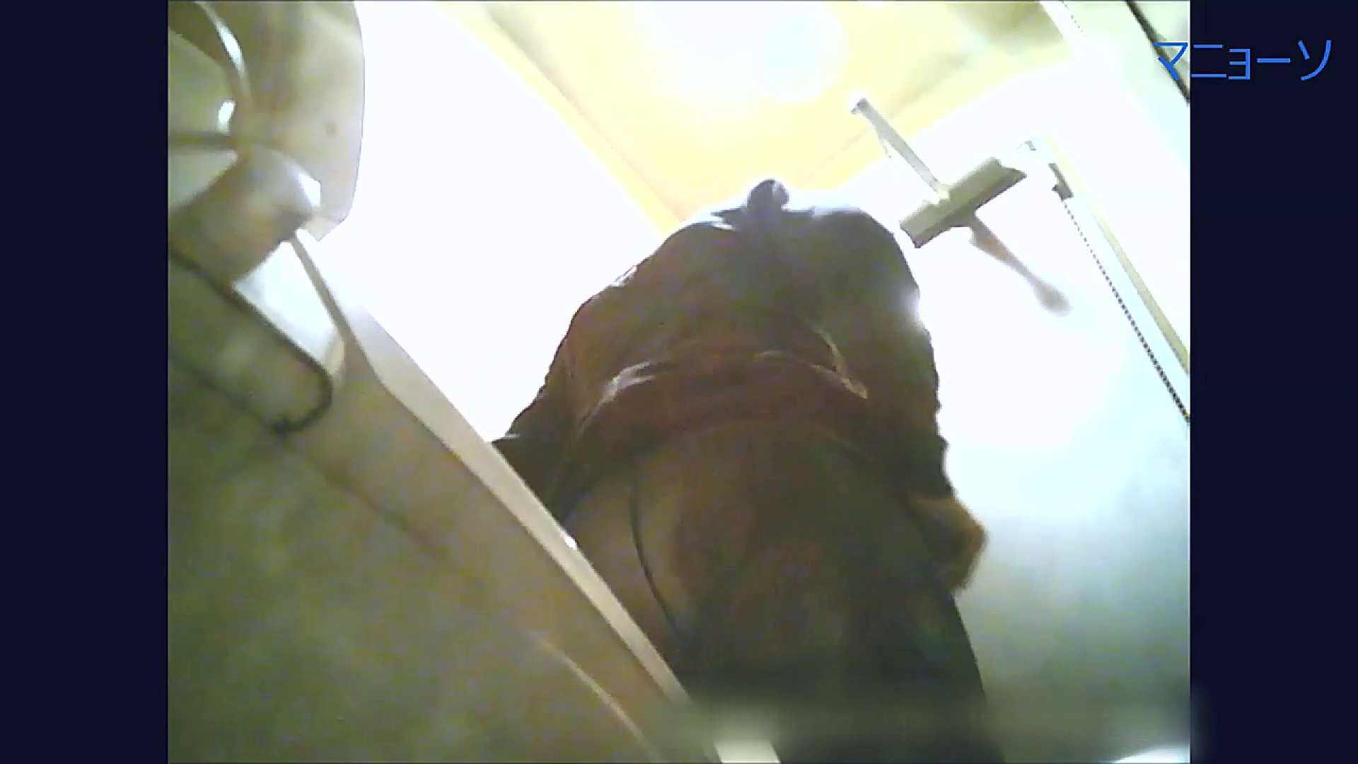 トイレでひと肌脱いでもらいました (OL編)Vol.10 OL  87pic 66