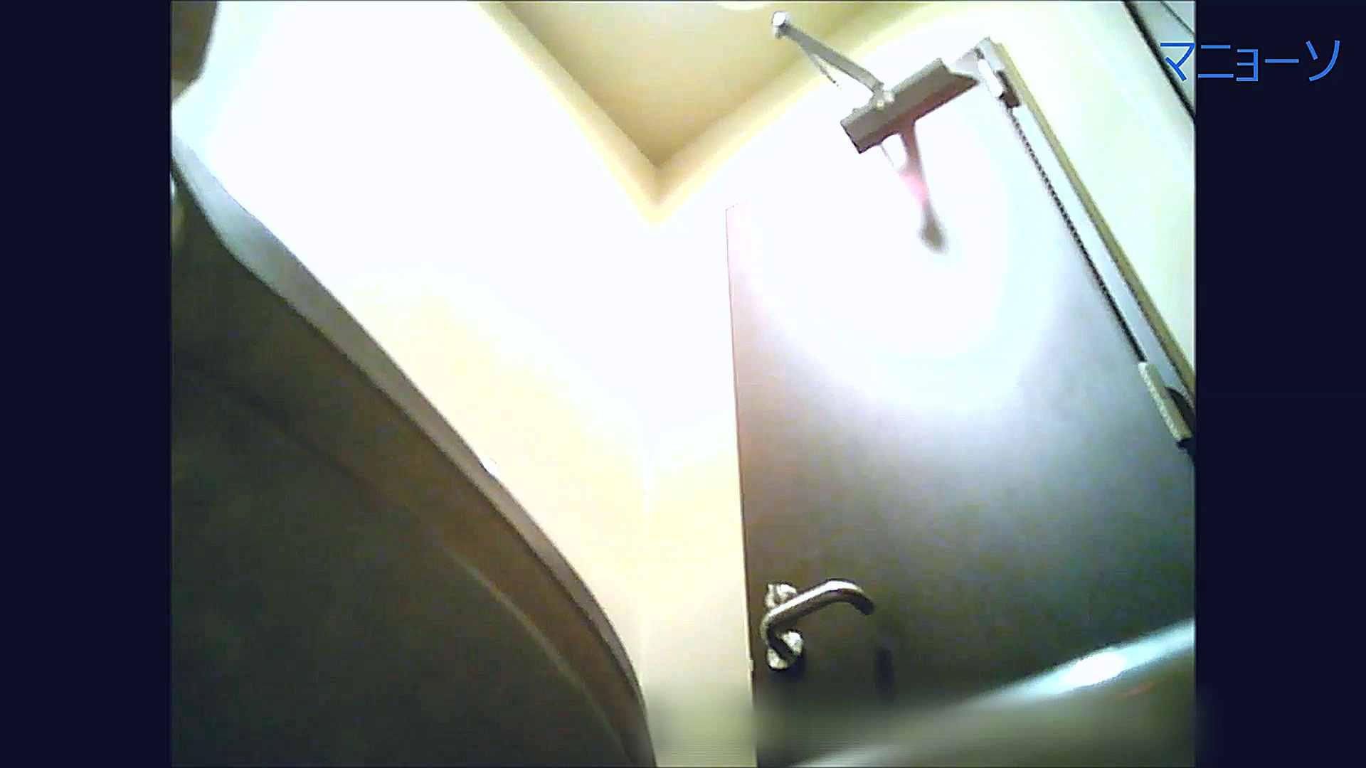 トイレでひと肌脱いでもらいました (番外編)Vol.02 トイレ  56pic 17