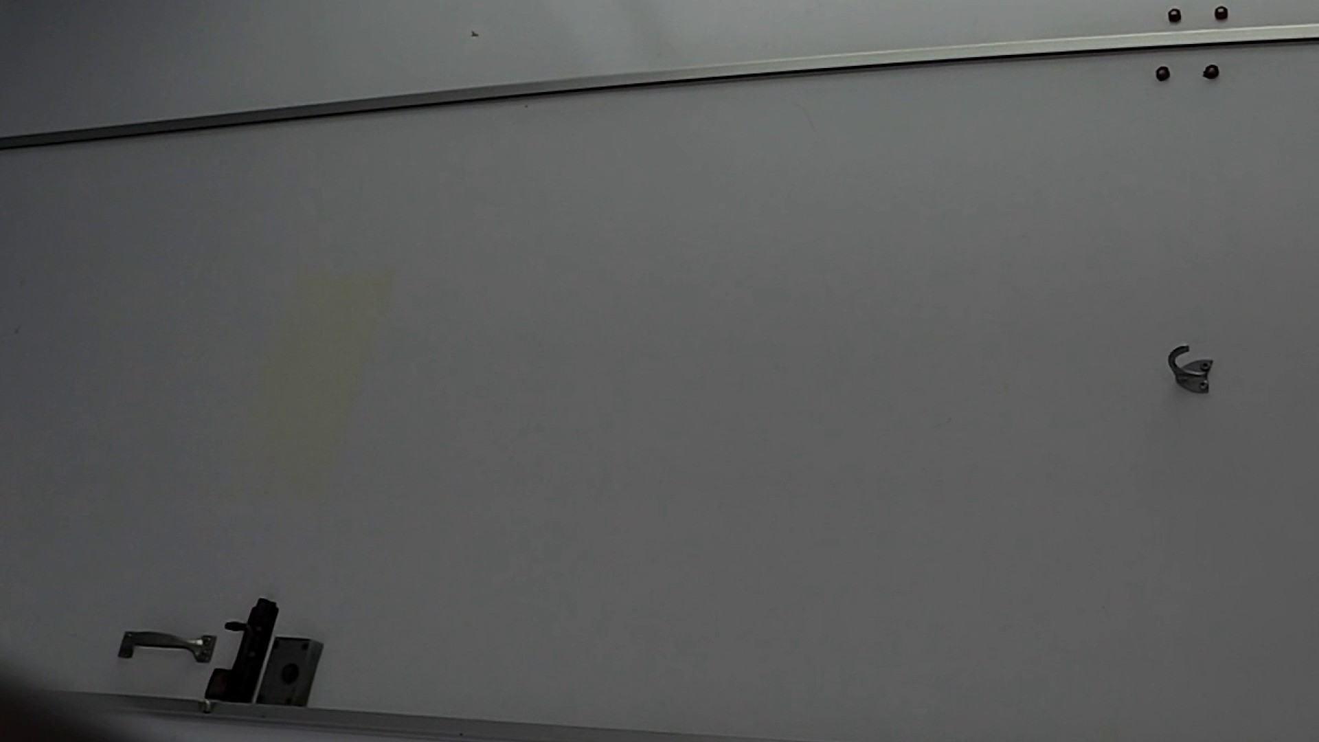 なんだこれ!! Vol.08 遂に美女登場!! テクニック  78pic 68