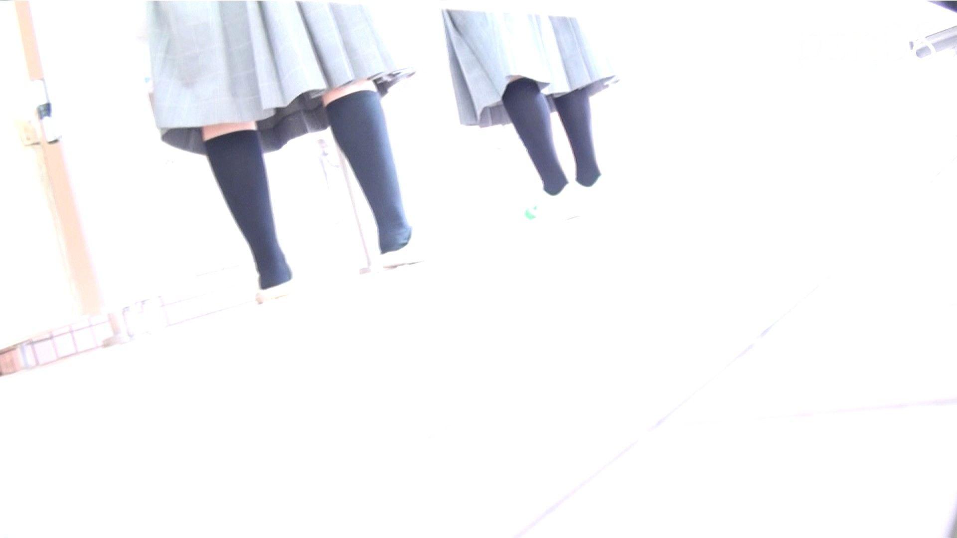 ▲復活限定▲ハイビジョン 盗神伝 Vol.8 OL  90pic 90