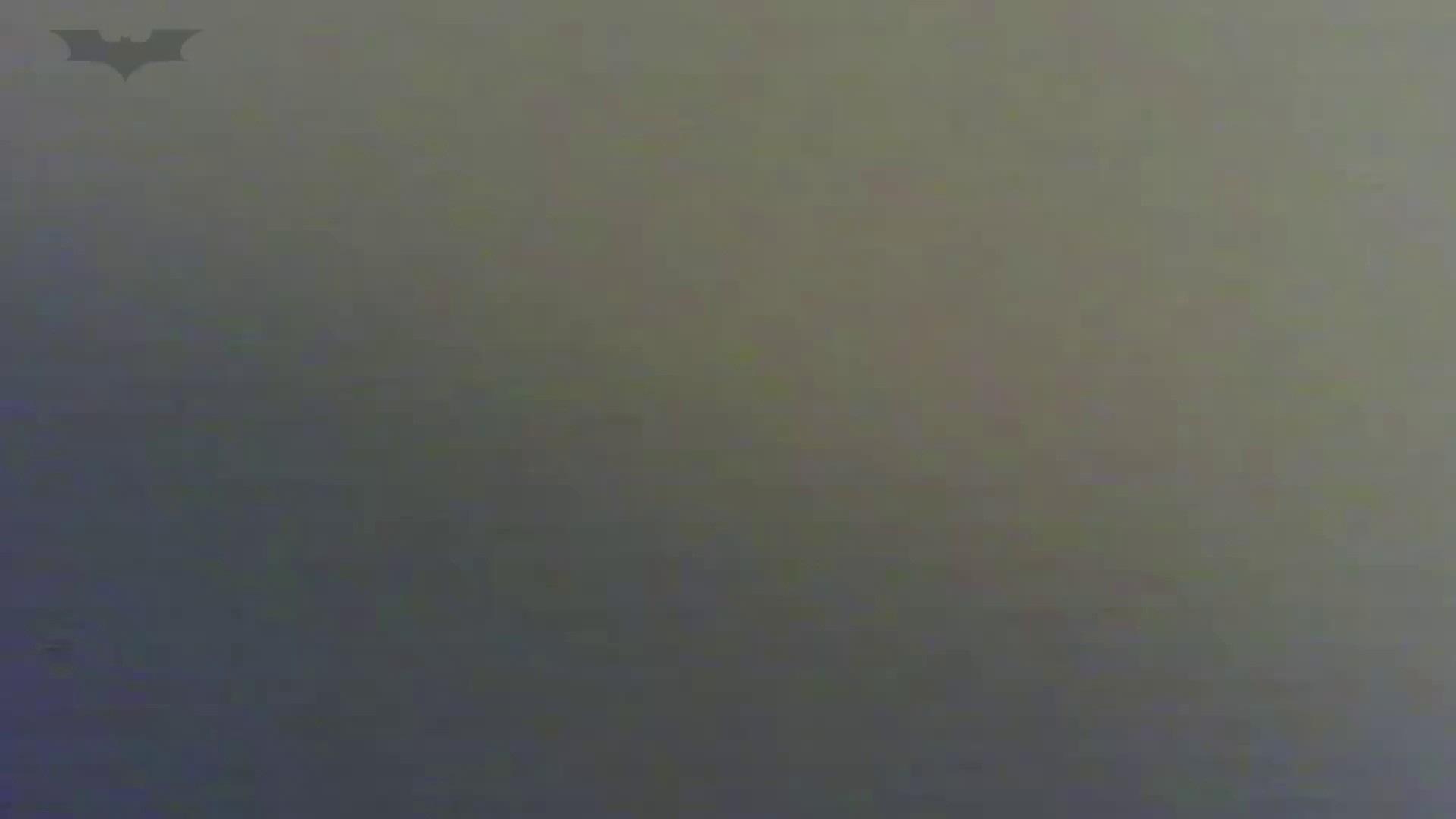 夏の思い出浜辺トイレ盗撮Vol.20 トイレ  112pic 82