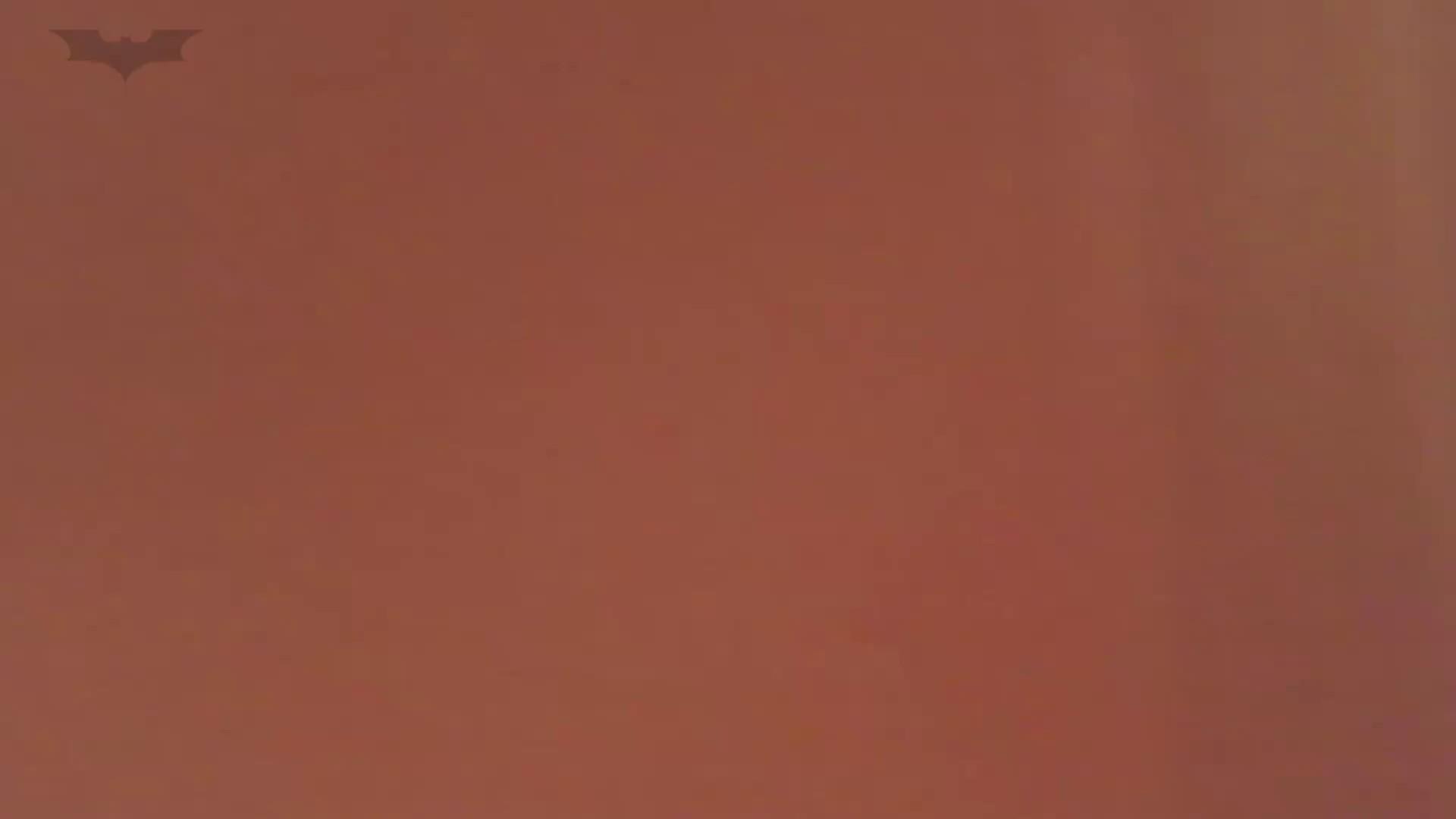 夏の思い出浜辺トイレ盗撮Vol.20 トイレ  112pic 92