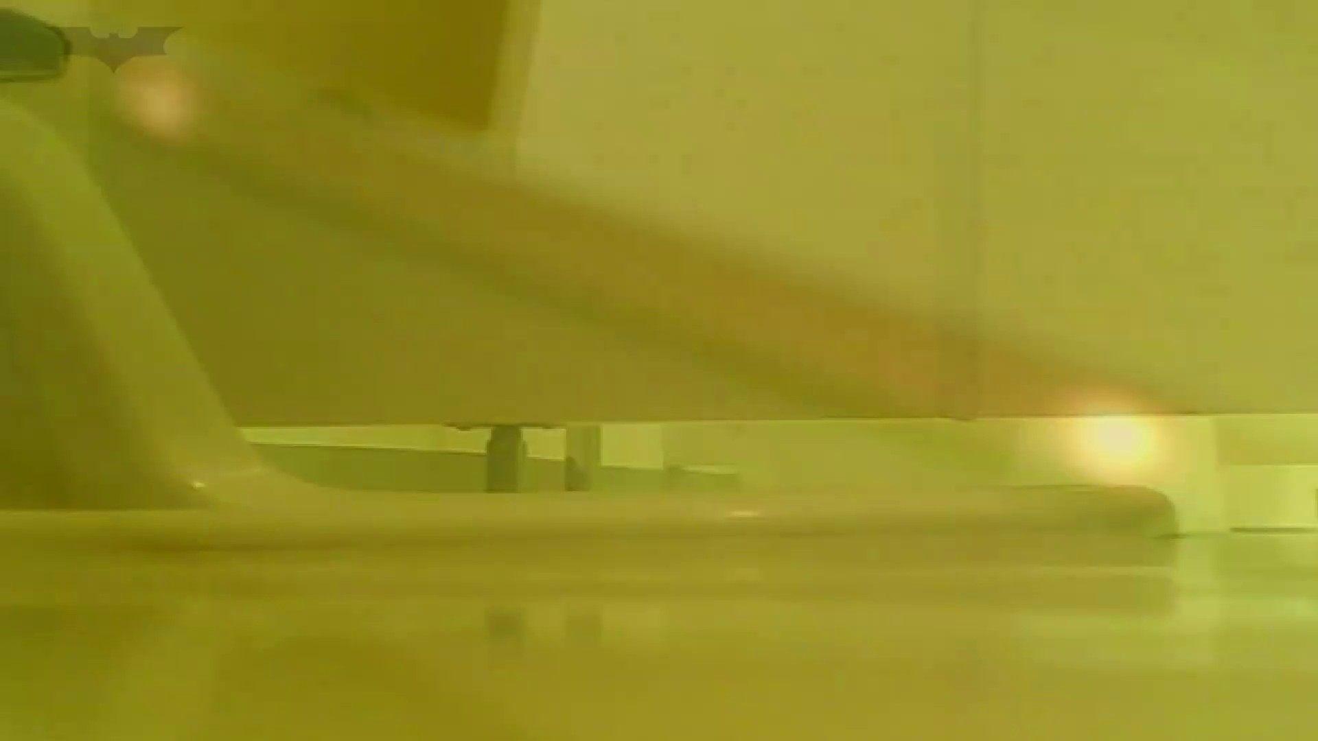 夏の思い出浜辺トイレ盗撮Vol.20 トイレ  112pic 110