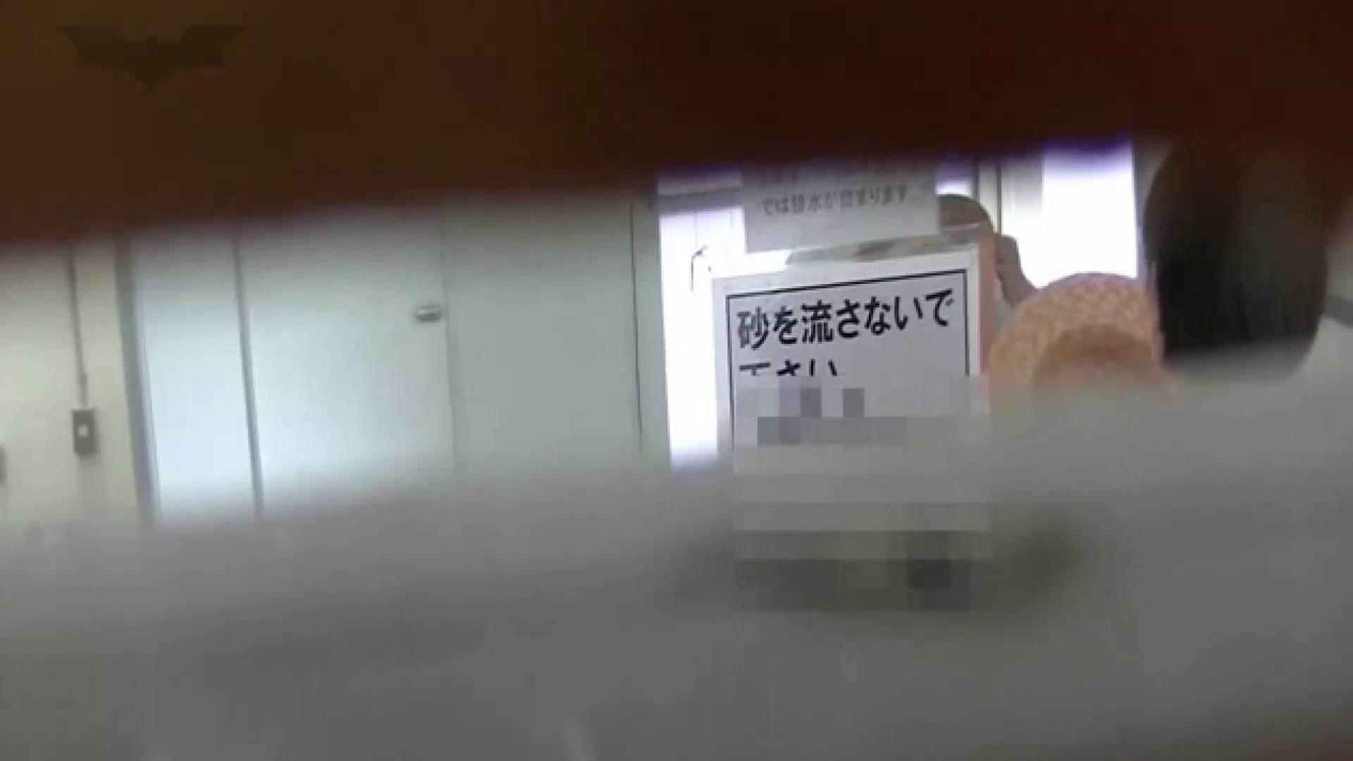 夏の思い出浜辺トイレ盗撮Vol.24 トイレ  68pic 18
