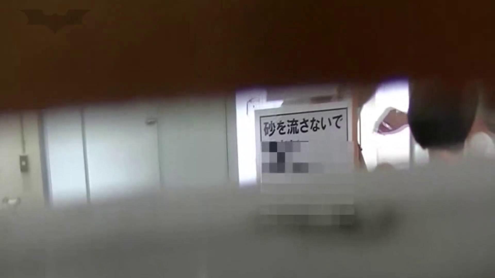 夏の思い出浜辺トイレ盗撮Vol.24 トイレ  68pic 19