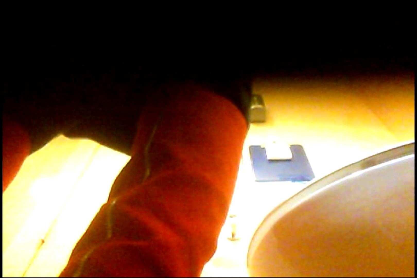 マダムが集まるデパートお手洗い Vol.04 丸見え  63pic 22