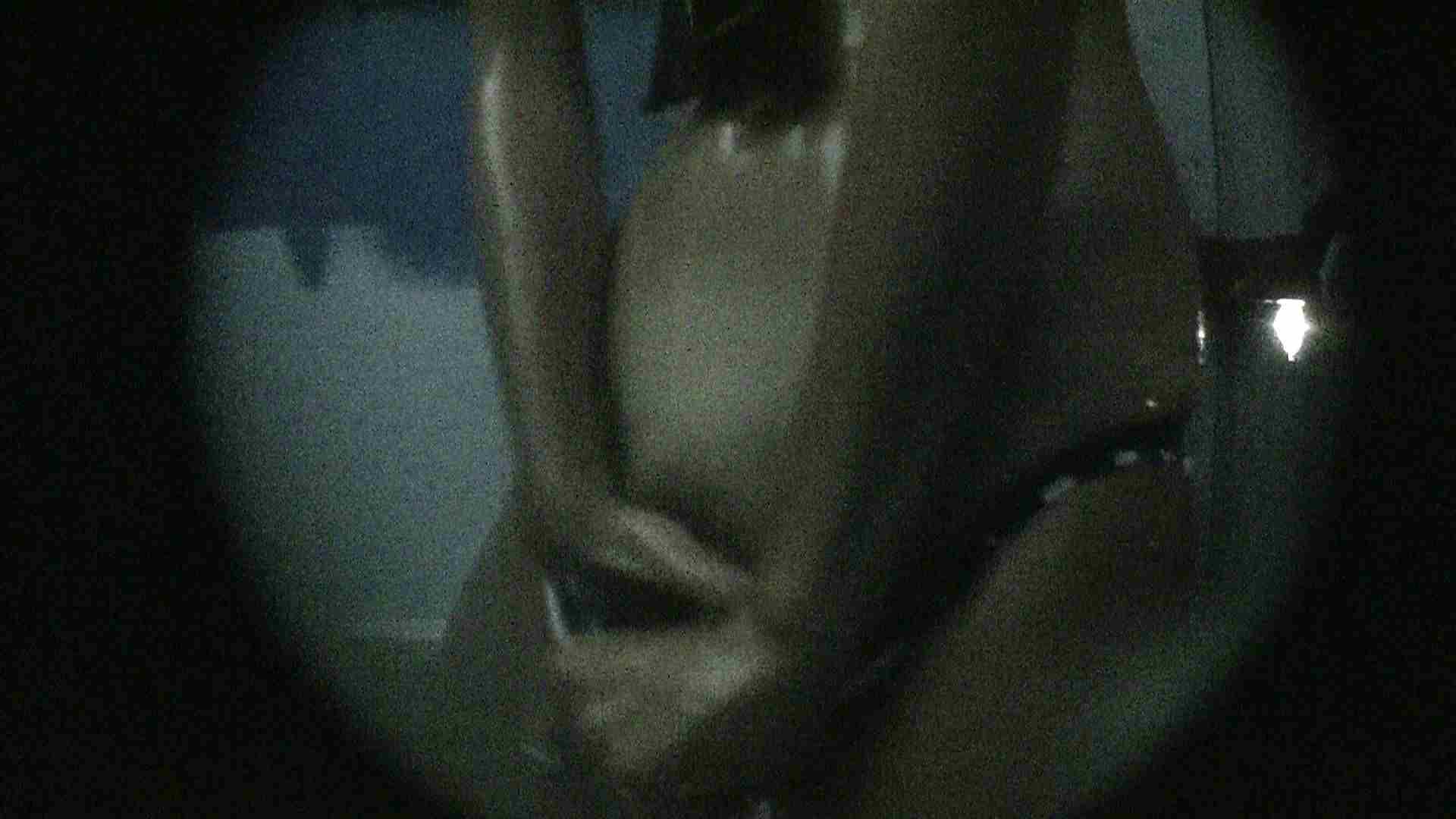 NO.13 暗いですが豪快な砂落としが好印象 シャワー室  89pic 13