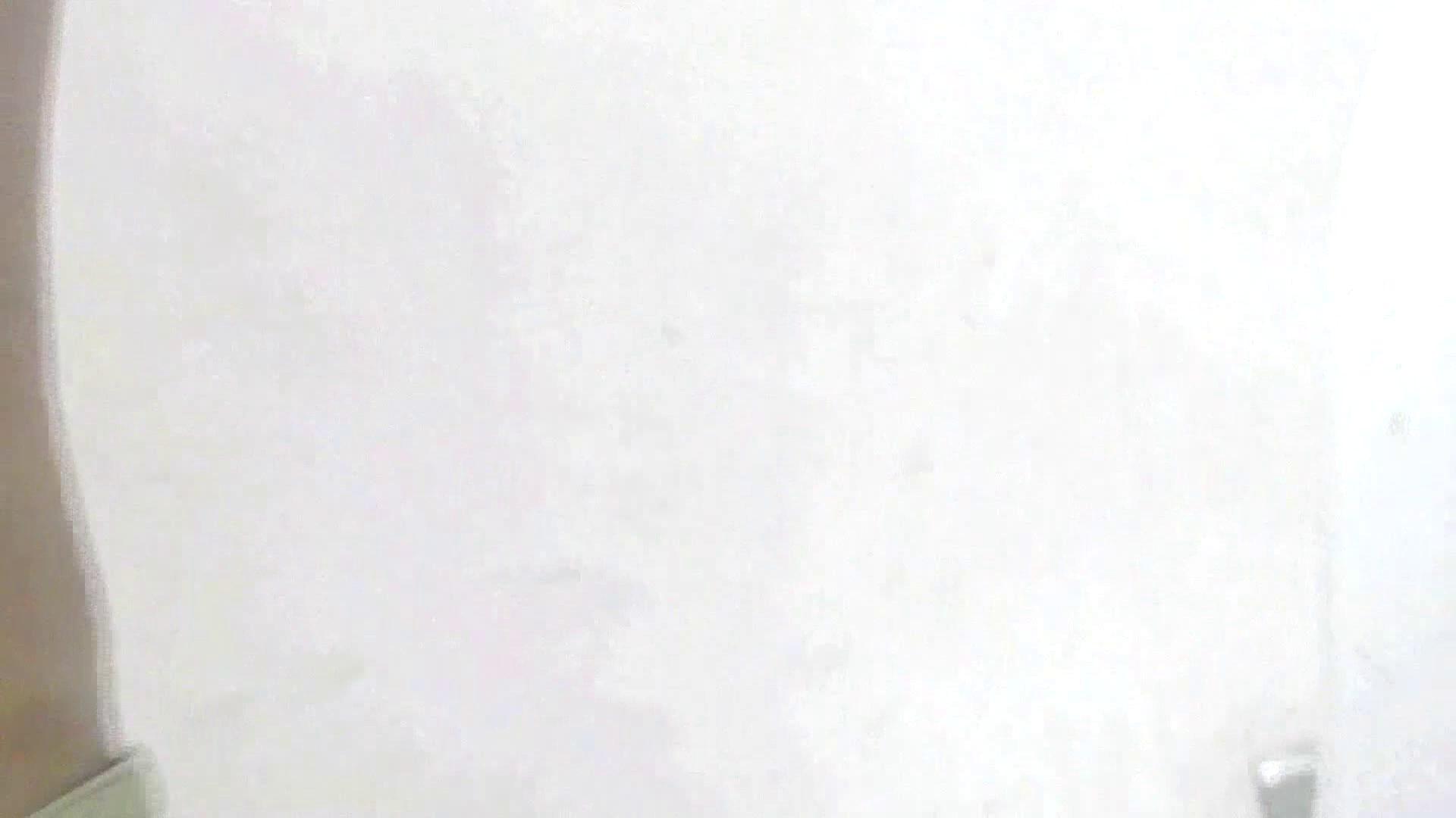 洗面所特攻隊 vol.X さらば!!特攻隊。【2015・08位】 洗面所  85pic 4