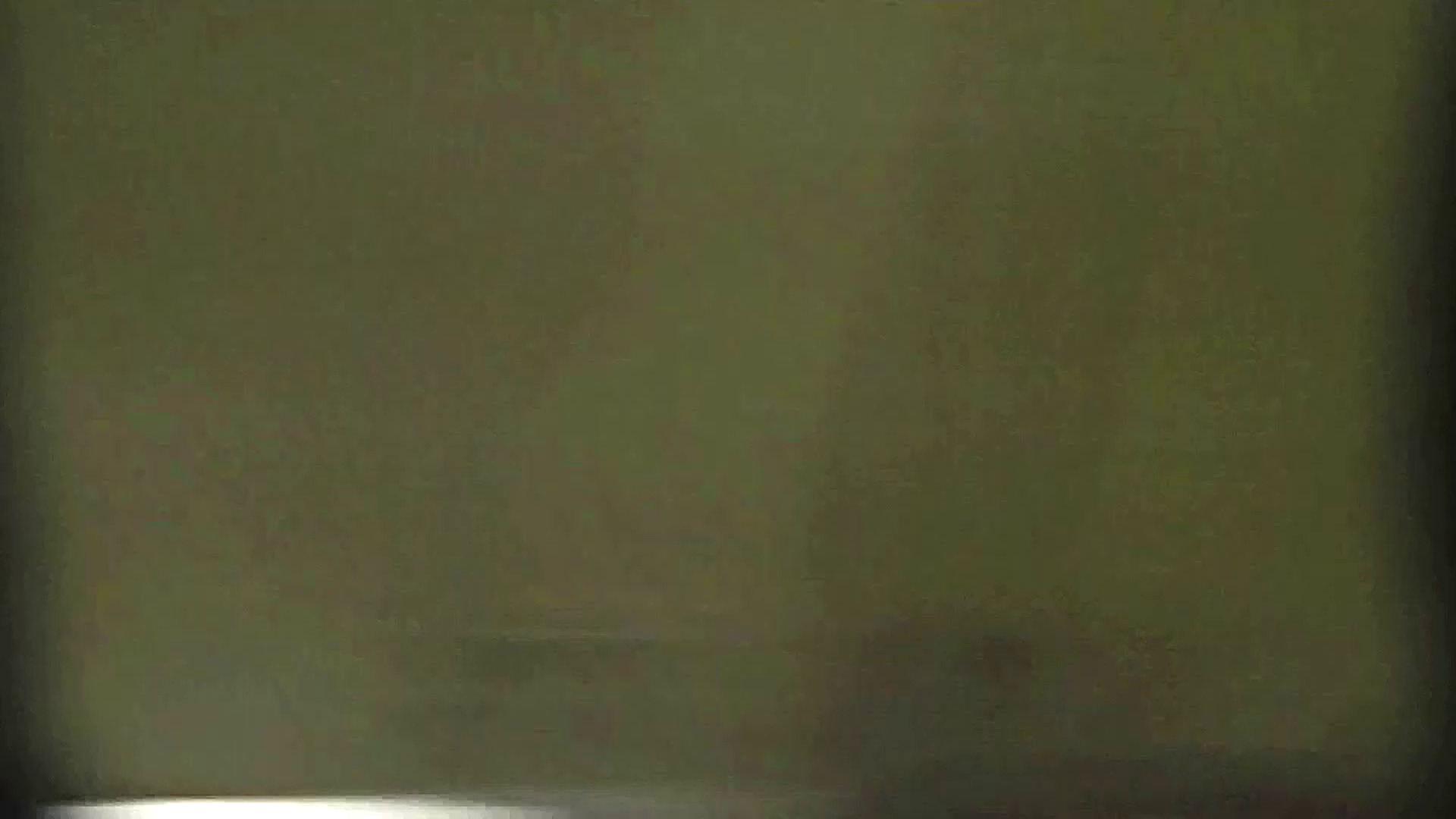 洗面所特攻隊 vol.X さらば!!特攻隊。【2015・08位】 洗面所  85pic 66