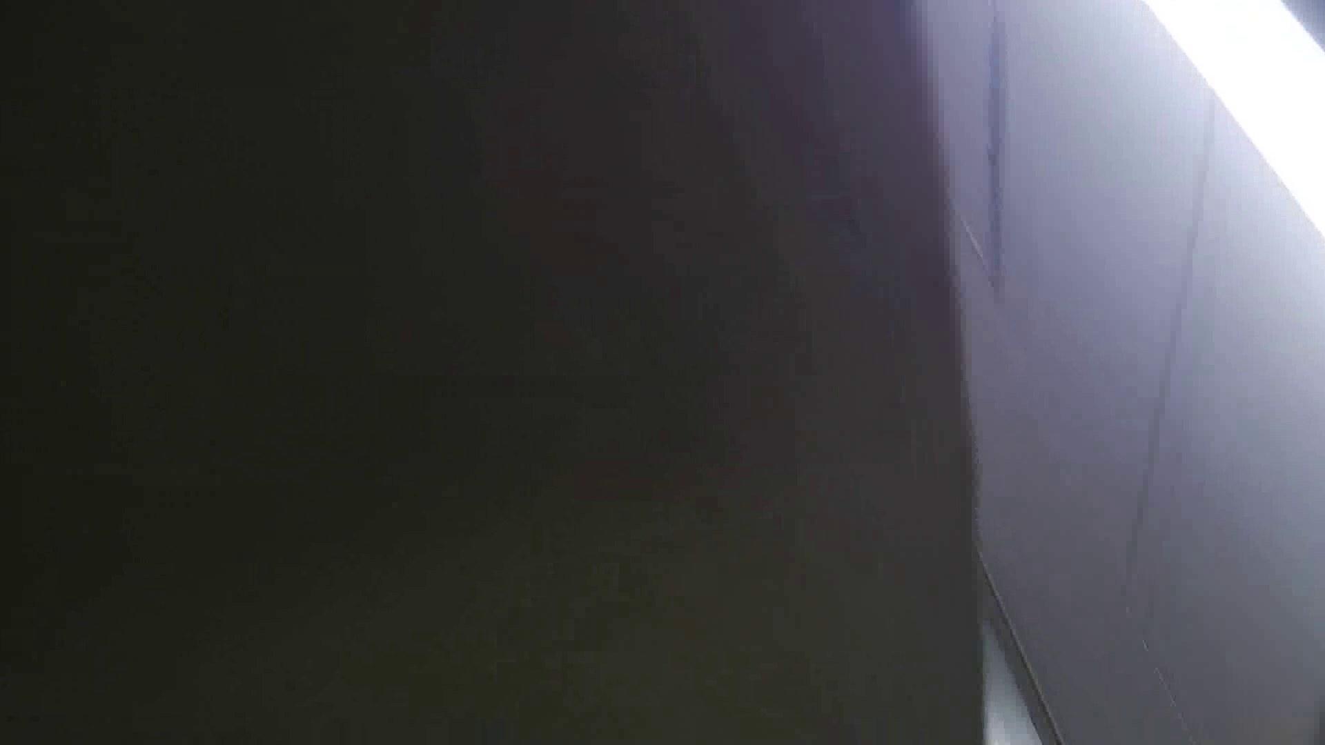 【美しき個室な世界】 vol.018 ピンクのおネエタン 洗面所  82pic 37