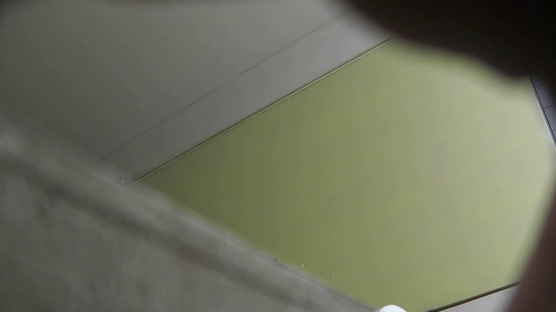 【美しき個室な世界】 vol.022 ヒクヒクさんたち 洗面所  68pic 23