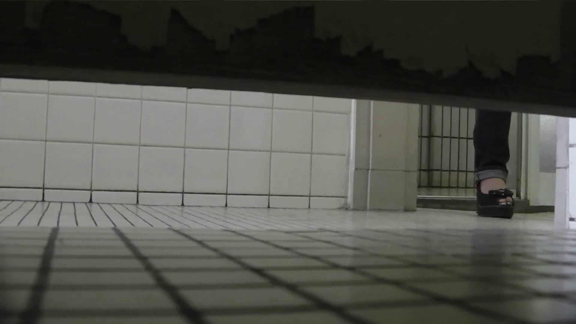 【美しき個室な世界】 vol.022 ヒクヒクさんたち 洗面所  68pic 33