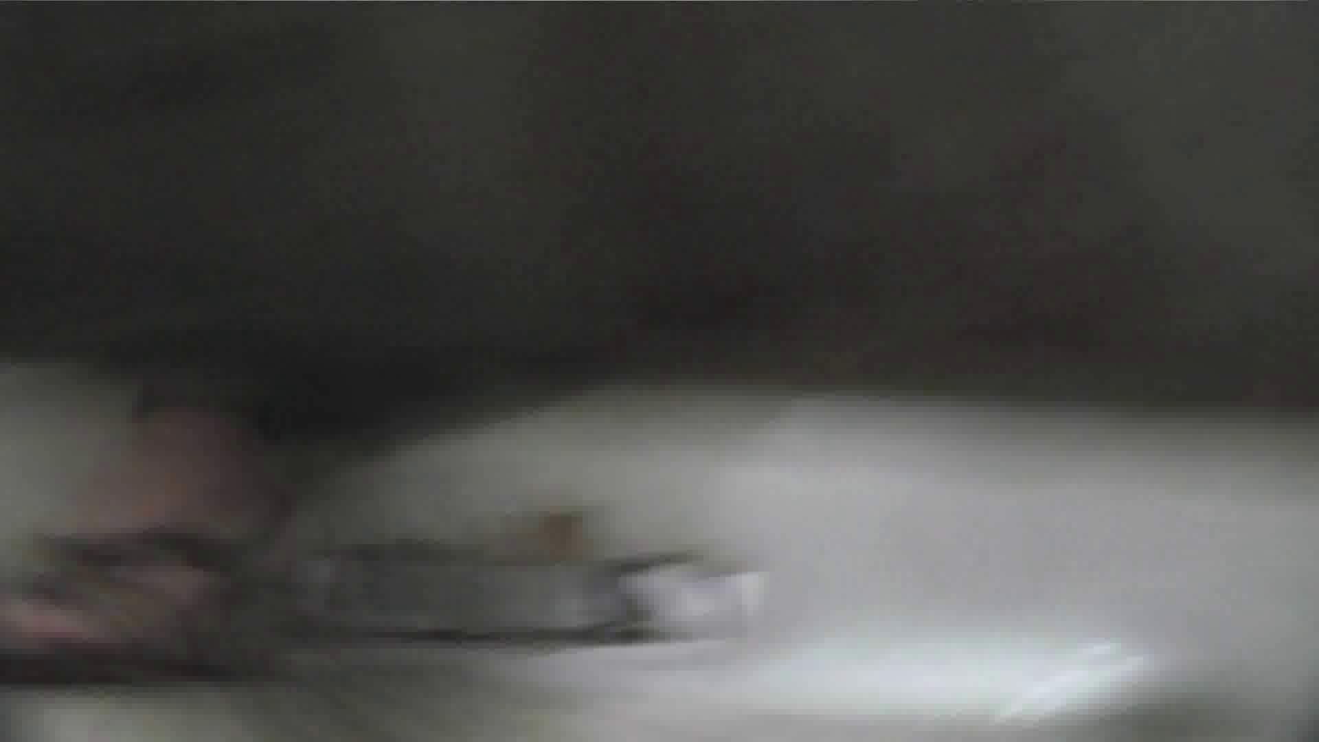 【美しき個室な世界】 vol.022 ヒクヒクさんたち 洗面所  68pic 53