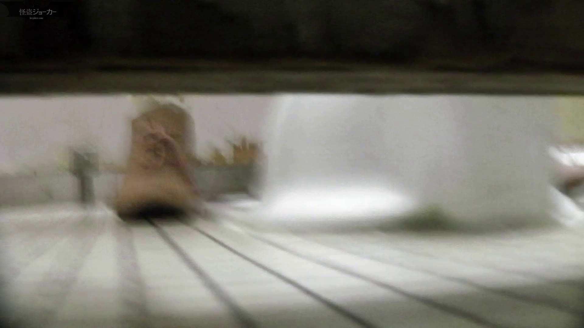 【美しき個室な世界】洗面所特攻隊 vol.046 更に進化【2015・07位】 洗面所  66pic 9